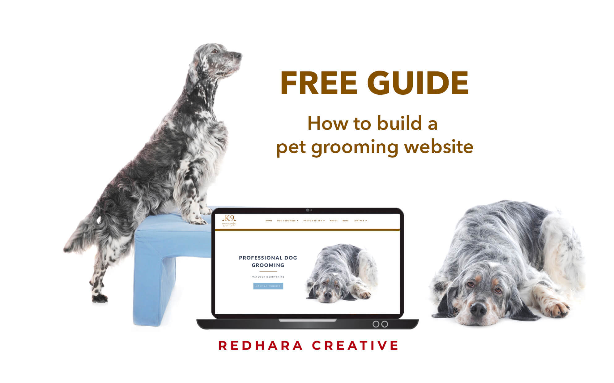 make your own dog grooming website