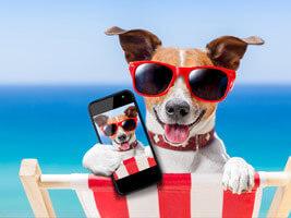 secure online photo storage