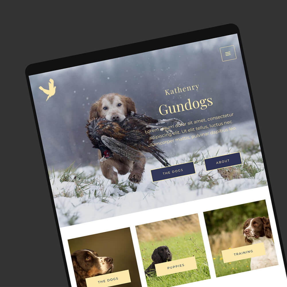 dog groomers website templates