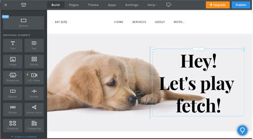 free website for pet businesses