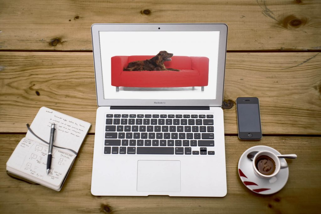 MAKE A DOG GROOMING WEBSITE