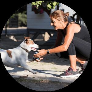 free pet business website