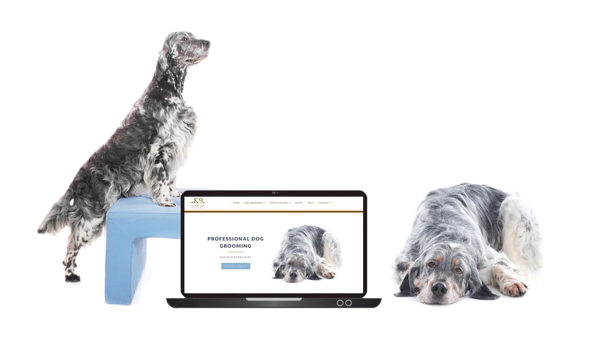 dog grooming WordPress theme